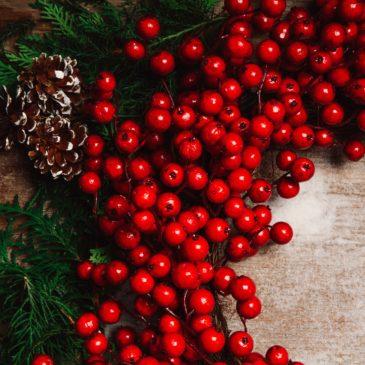 Réussissez votre Noël Hygge